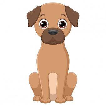 Illustration of sitting golden retriever dog cartoon on white background