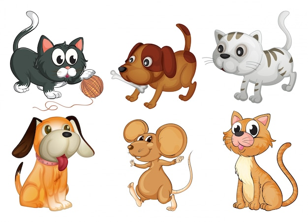 Illustration of six different animals with four legs on a white background