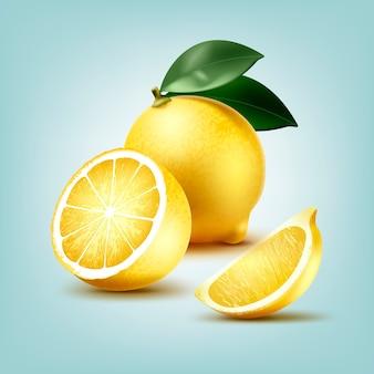 Illustration of slice and whole juicy lemon fruit