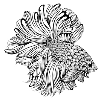 The illustration of the small beta fish with the big and long tail the body full of zentangle