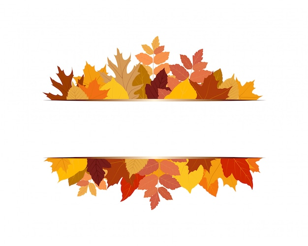 Illustration of various colorful autumn leaves with banner