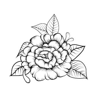スケッチ花の塗り絵のイラスト