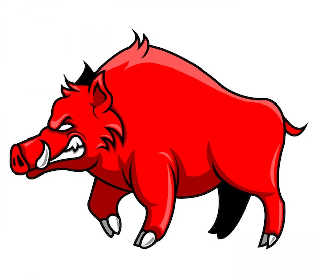 Illustration of walking red hogs