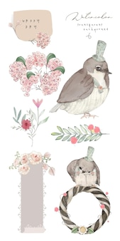 Illustration watercolor bird, flower, leaf and natural wild hand drawn set