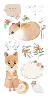 Illustration watercolor fox, flower, leaf and natural wild hand drawn set