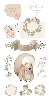 Illustration watercolor squirrel, flower, leaf and natural wild hand drawn set