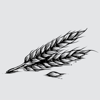 Illustration of wheat in engraved style