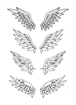 Illustration of wings collection set