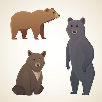 Illustration with different bears isolated on white background cartoon