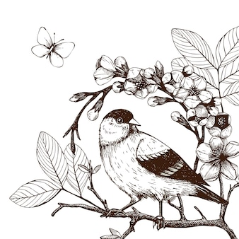 Illustration with hand draw bird on blooming tree twig. vintage sketch of  hand sketched bird