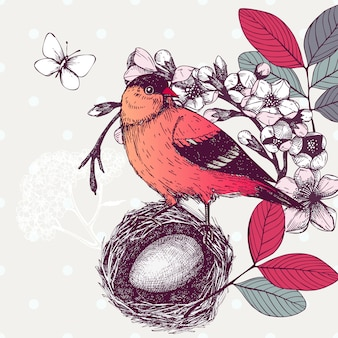 Illustration with hand draw bird on blooming tree twig. vintage sketch of red bird