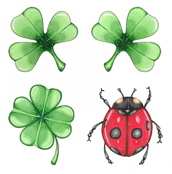 Illustration with set of leaves clover and  ladybug hand drawn