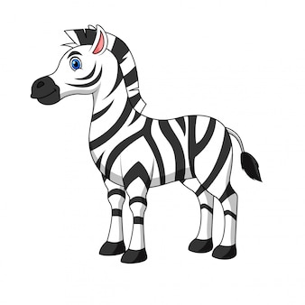 Illustration of a zebra cartoon