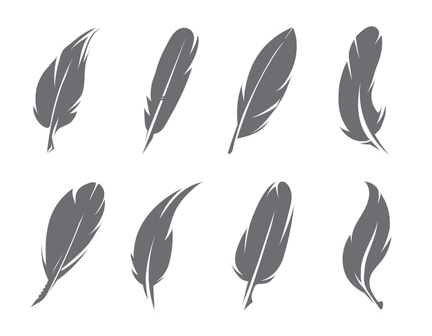 Illustrations of feathers. pen of bird for writing, quill fluffy