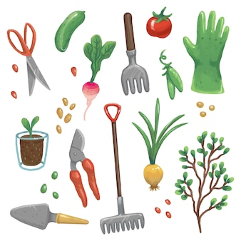 Illustrations of garden tools, vegetables and plants. gloves, rake, scissors, pruner, shovel, onion, seeds, peas, sapling, cucumber, radish, potted sprout, tomato