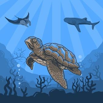 イラストウミガメ、クジラ、アカエイ、サンゴ礁、水の水中