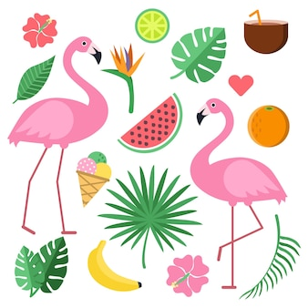 Illustrations with summer symbols. tropical fruits and flowers.