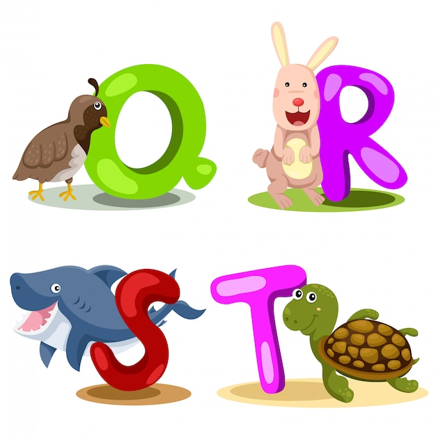 Иллюстратор алфавита животного письмо - q, r, s, t