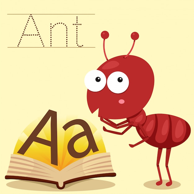 Illustrator of a for ant vocabulary