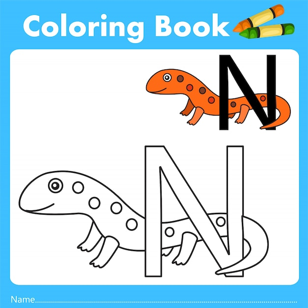 Illustrator of color book with newt animal