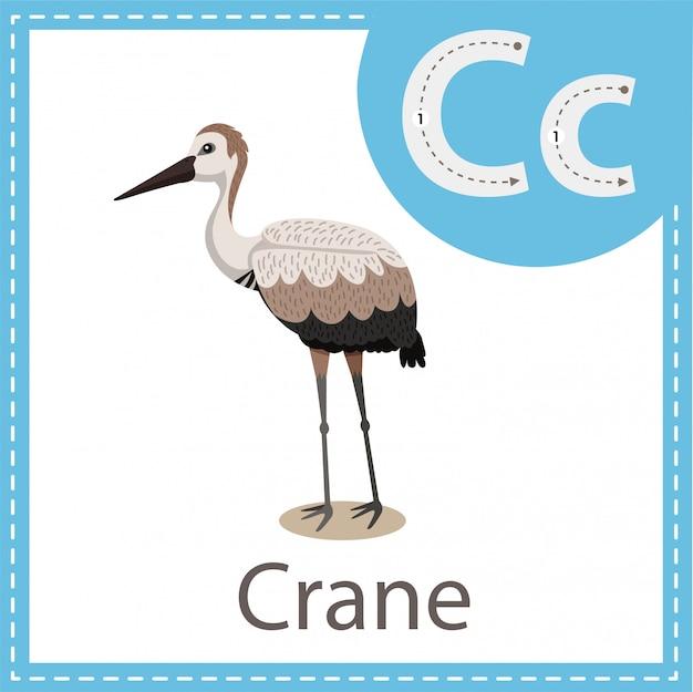 Illustrator of crane bird