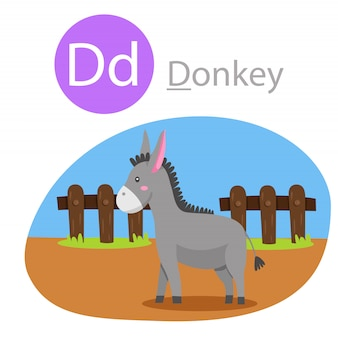 Illustrator of d for donkey animal
