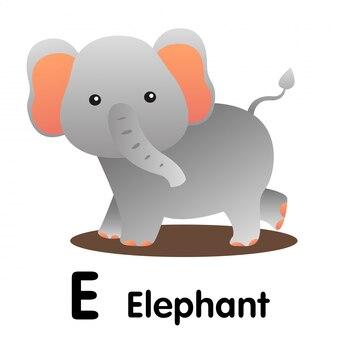 Illustrator of e elephant animal