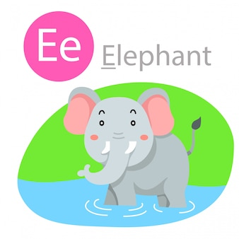 Illustrator of e for elephant animal