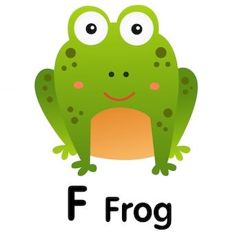 Illustrator of f frog animal