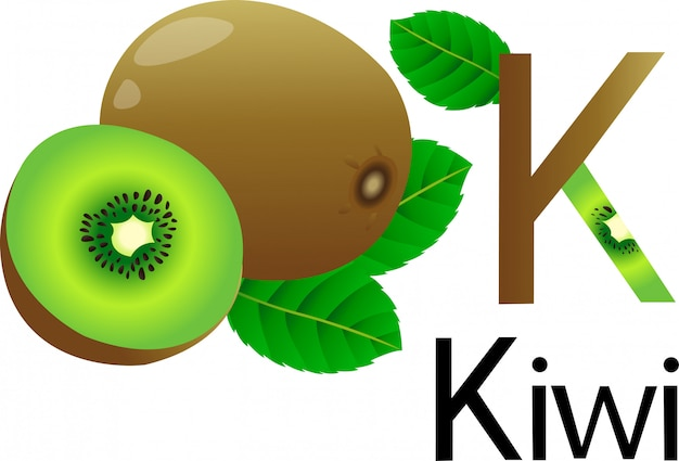 Illustrator k font with kiwi