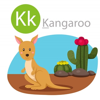 Illustrator of k for kangaroo animal