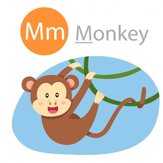 Illustrator of m for monkey animal
