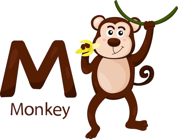 Illustrator of m with monkey