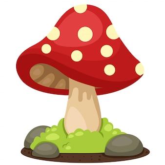 Illustrator of mushrooms landscape