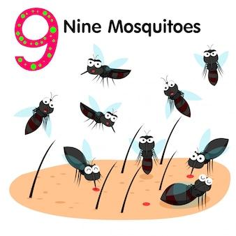 Illustrator of number nine mosquitoes