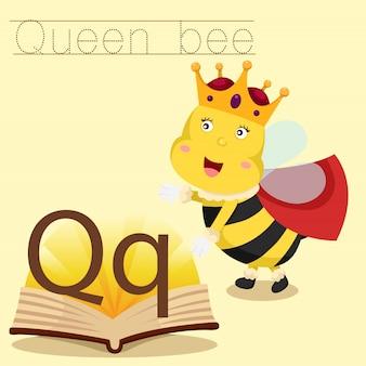 여왕벌 어휘에 대한 Q의 일러스트 레이터 프리미엄 벡터