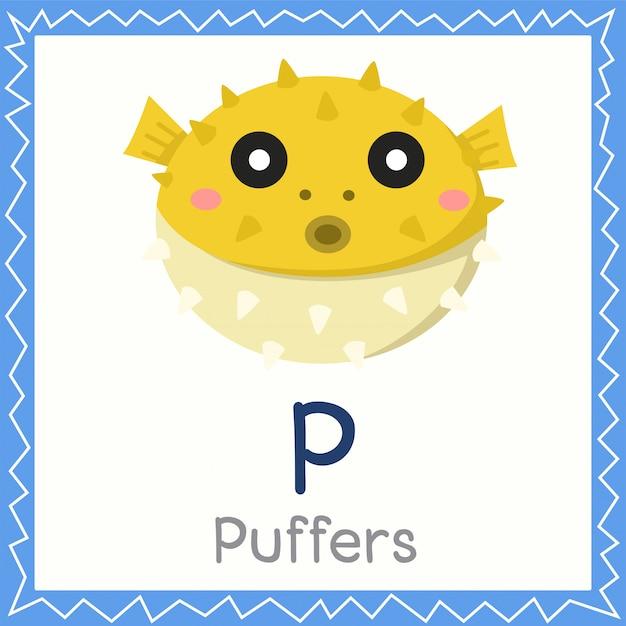 Illustrator of p for puffers animal