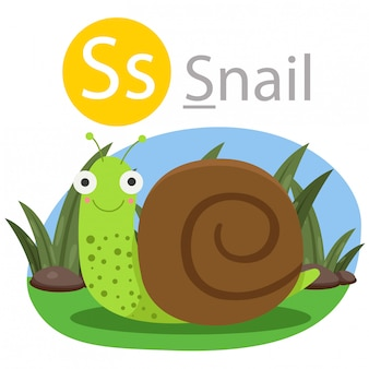Illustrator of s for snail animal