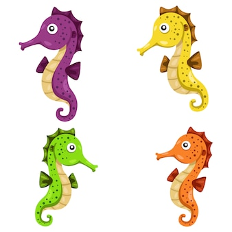 Illustrator of sea horse