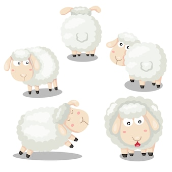 Illustrator of sheep funny cartoon