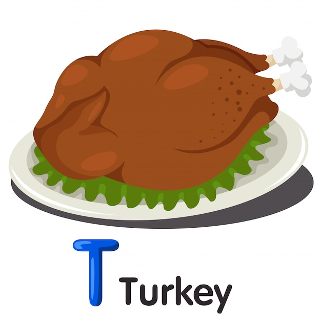 Illustrator of t font with turkey