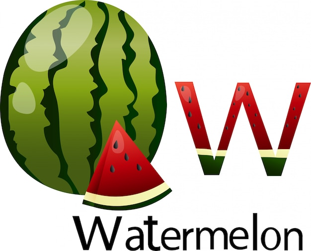 Illustrator w font with watermelon