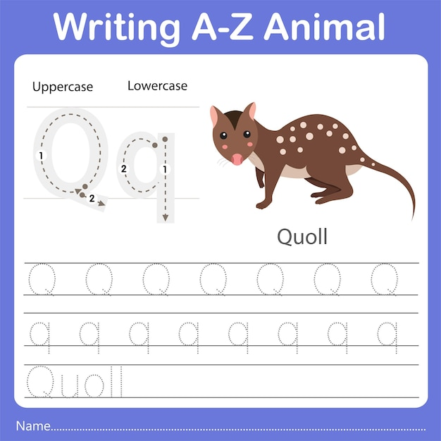 Illustrator of writing az animal quoll