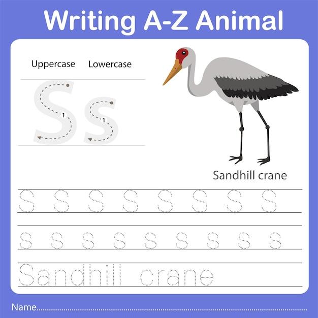 Illustrator of writing az animal sandhill crane