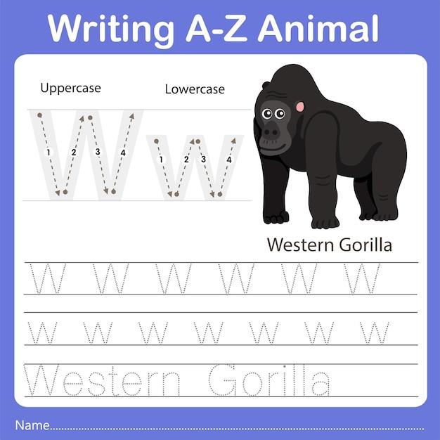Illustrator of writing az animal western gorilla