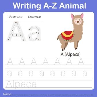 Illustrator of writing a z animal alpaca