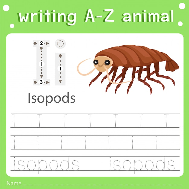 Illustrator of writing a-z animal i isopods