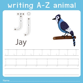 Illustrator writing a-z animal of jay