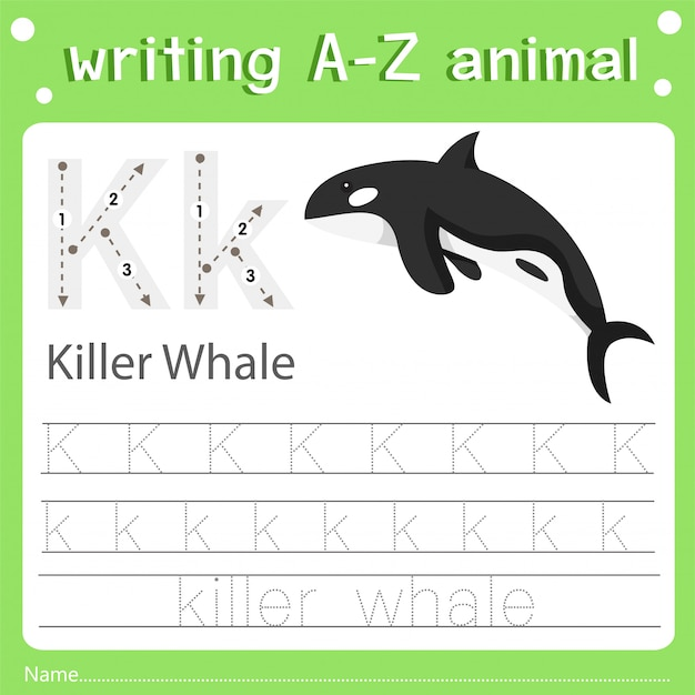 Illustrator of writing a-z animal k killer whale