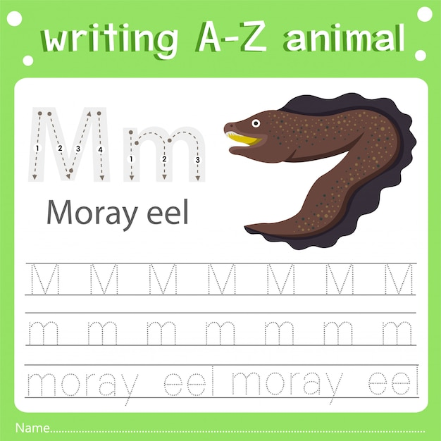Illustrator of writing a-z animal m moray eel